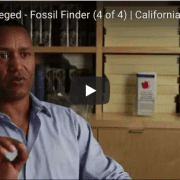 Fossil Finder #4 video